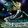 CUBIC SPLINE - UNUSUAL PATH
