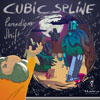 CUBIC SPLINE - PARADIGM SHIFT