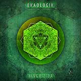 EKAOLOGIK - NINGHIZIDA