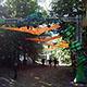 Hadra Trance Festival 2014 - 21 au 24 ao�t 2014 - Lans-en-Vercors (France) (Ph. Tris)