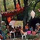 Camping sous les arbres... (Ph. Sandrine)