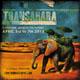 Transahara Festival 2013