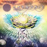 HarmonicFestival2019_160.jpg
